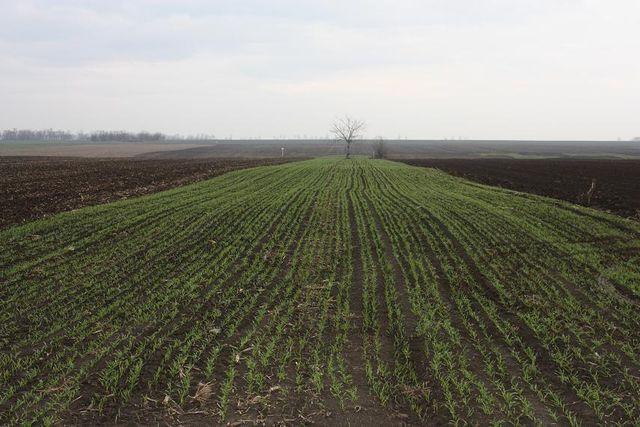 Palkovics Péter: 690 milliárd forint agrártámogatásra