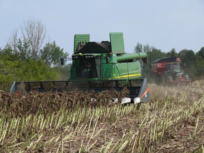 1. kép A betakarítás alapgépe az arató-cséplő gép és adaptere
