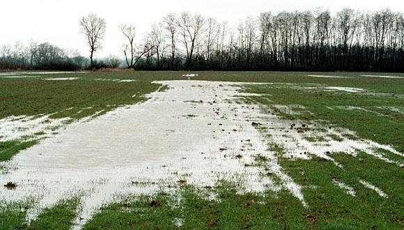 Ezerhatszáz hektár termőföldet borít víz Bács-Kiskun megyében