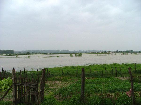 NÉBIH: 2,3 milliárd forint a termelők kára a dunai árvíz miatt