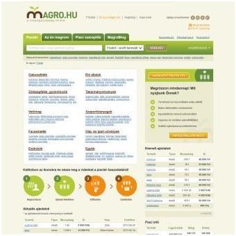 A Magro.hu online piactér megjelenése