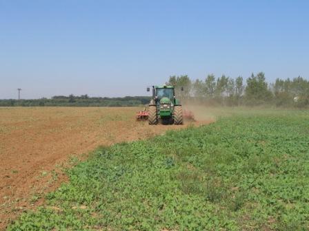 OGY - Csak a földbérlet-pályázatokról tárgyalt a mezőgazdasági bizottság albizottsága