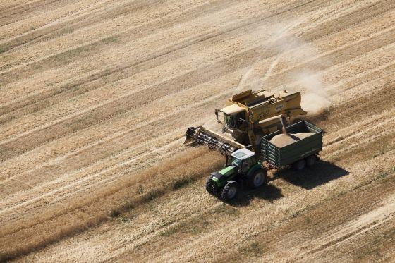 Fazekas: az agrárgazdaságok támogatására 60 milliárdos pályázat indul