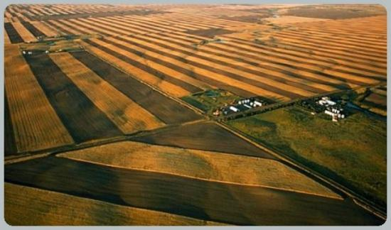 Fazekas: tovább bővíthetők a magyar-orosz agrárkapcsolatok