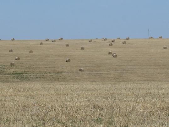 VM: a Földet a gazdáknak program főként a családi gazdálkodókat és a fiatal gazdákat segíti
