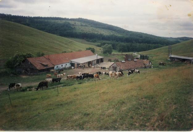 Budai Gyula: további 320 millió forint a tanyákon élők támogatására
