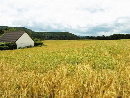 Kimerült a tanyafejlesztési program kerete