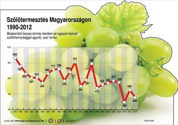 Tavaly 386 ezer tonna szőlő termett