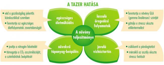 TAZER 250 SC - a zöld energia