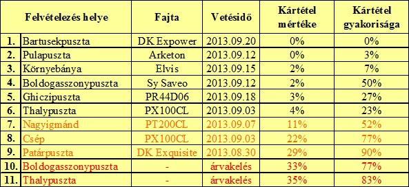 2. Táblázat: A 2013-ben vizsgált repce állományok főbb adatai és a káposztalégy kártételének alakulása