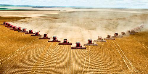 Czerván: döntő súlya van a mezőgazdaságnak a tavalyi GDP-növekedésben