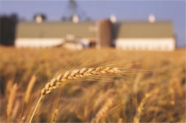 Együttműködési megállapodást írt alá az agrárkamara az ágazat finanszírozásának javításáért