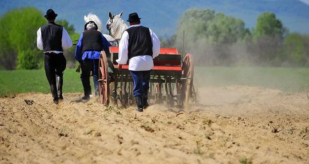 Fazekas: évszázados hagyományokat élesztenek újjá a családi gazdálkodók