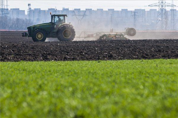 Varga Sándor boronálással vetéshez készít elő egy szántóföldet Debrecen határában 2014. március 11-én. A tavaszias időjárásnak köszönhetően megkezdődtek a tavaszi mezőgazdasági munkák a földeken Hajdú-Bihar megyében.