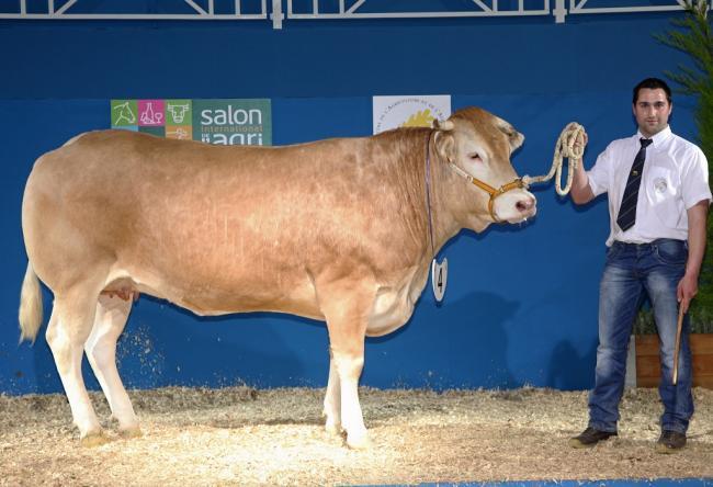 Damien CRANSAC: 2009-ben vette át a 165 hektáros családi gazdaságot és a 130 tehénből és szaporulatából álló blonde d?Aquitaine törzstenyészetet szüleitől. A bevételeik nagy része a tenyészállatok (bika és üsző) értékesítésből származik. Néhány éve show bíróként is fel szokták kérni a kiállításokon
