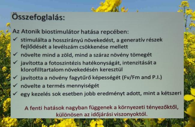 Az Atonik biostimulátor hatása repcében: - stimulálta a hosszirányú növekedést, a generatív részek fejlődését a levélszám csökkenése mellett - növelte mind a zöld, mind a száraz növény tömegét - javította a fotoszintézis hatékonyságát, intenzitását a klorofilltartalom növekedésén keresztül - javította a növény fagytűrő képességét (Fv/Fm and P.I.) - növelte a termés mennyiségét - egy kezelés sok esetben jobb eredményt adott, mint a kétszeri A fenti hatások nagyban függenek a környezeti tényezőktől, különösen az időjárási viszonyoktól.