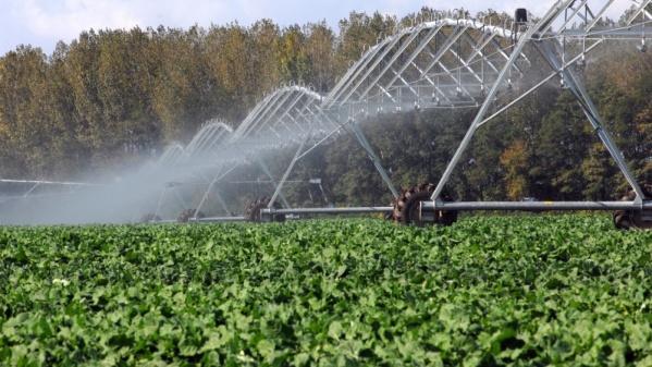 Öntözés - Ingyenes lesz a víz a gazdáknak az öntözéshez