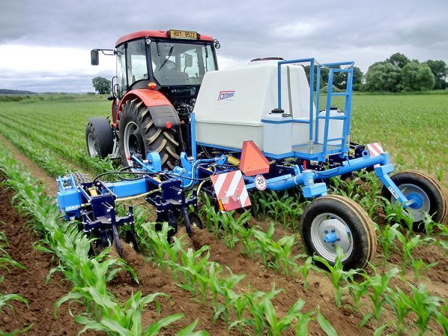Kukorica sorközművelésével együtt végzett folyékony műtrágya-kijuttatás (Farmet Kultis 6)