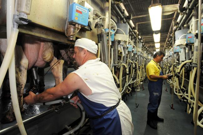 Tejpiaci egyeztetés - Szigorúbb szabályozást vár a tej terméktanács