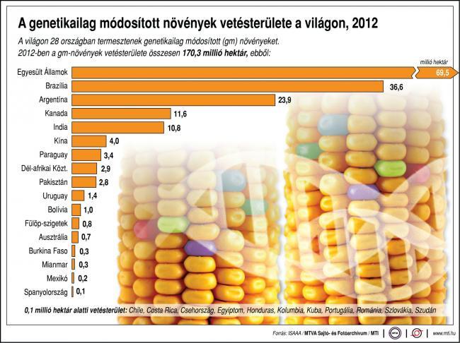 A genetikailag módosított növények vetésterülete a világon, 2012 A világon 28 országban termesztenek genetikailag módosított (gm) növényeket. 2012-ben a gm-növények vetésterülete összesen 170,3 millió hektár