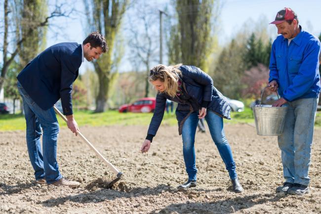 Mocsai Tamás és Novodomszky Éva vetette az első sor burgonyát