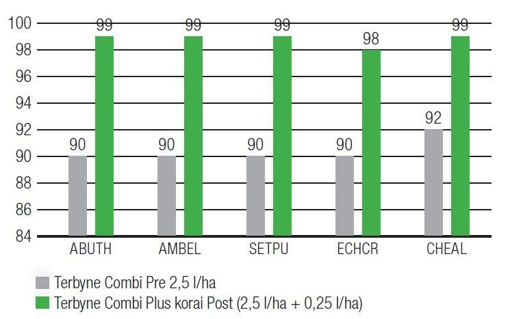 Terbyne Combi® Pre 2,5 l/ha és a Terbyne Combi® Plus korai post kezelések hatékonysága Felsőnána, Kwizda Terepszemle 2016. / Értékelés: 2016. 06. 30. Syntec A Terbyne Combi® Plusban levő Callido® 4 SC (mezotrion) a kombináció hatékony sá gát közel tökéletessé teszi, csapadék függőségét jelentősen csökkenti és hosszú tartamhatást biztosít