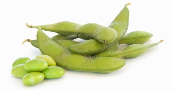 Termeljünk GMO-mentes szójababot Európában!
