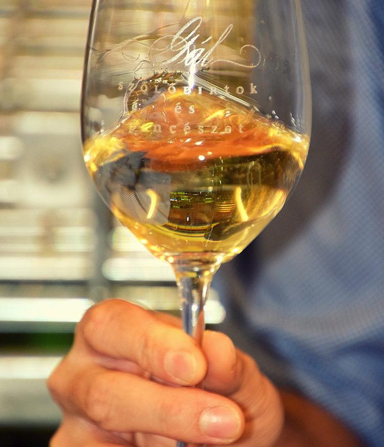szőlész-borász
