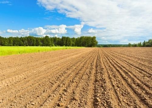 Az agrártárca az unió válaszát várja a földbizottságok ügyében