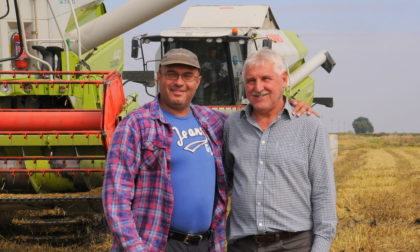 Lézert, repülőt is bevetnek a magyar rizstermesztők
