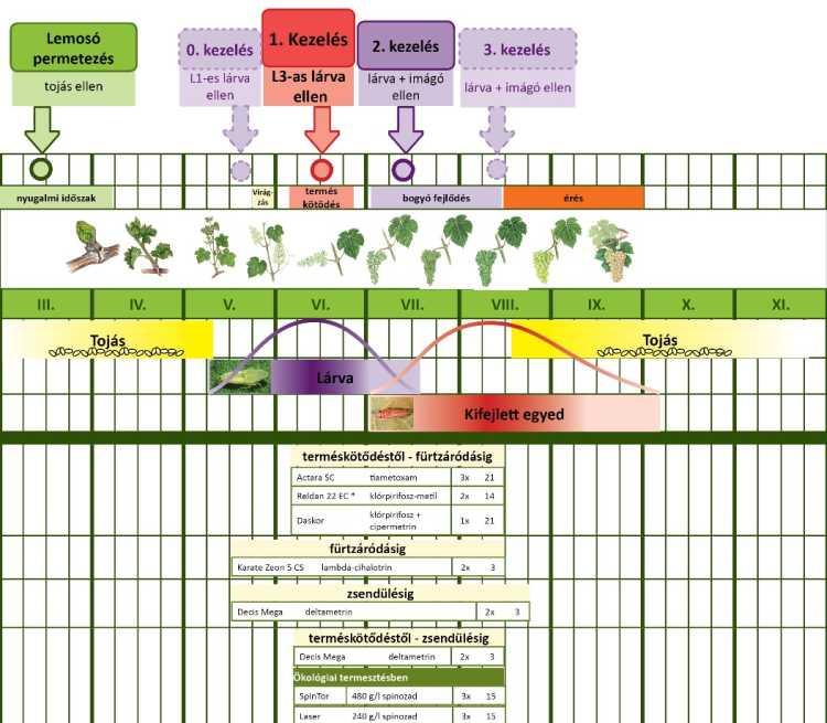 1. ábra: Amerikai szőlőkabóca elleni védekezési javaslat