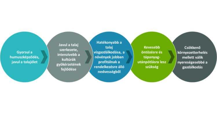 Így hat a SOBAC Bactériosol®-Bactériolit® talajjavító és trágyakezelő rendszere a talajra