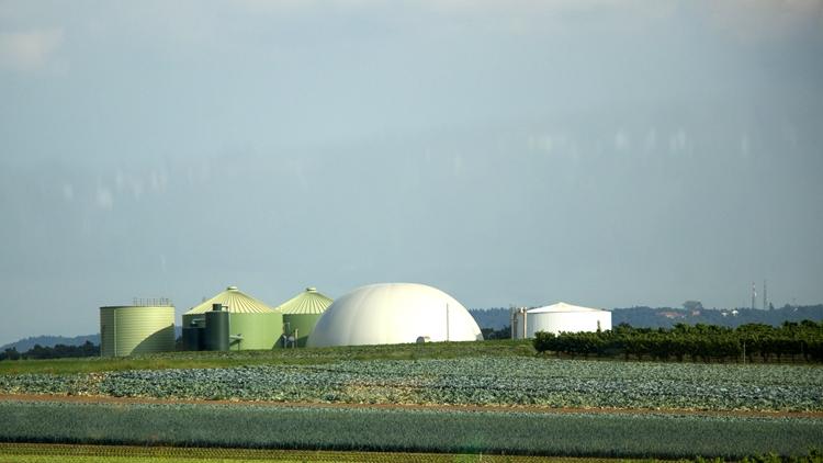 mezőgazdasági üzem
