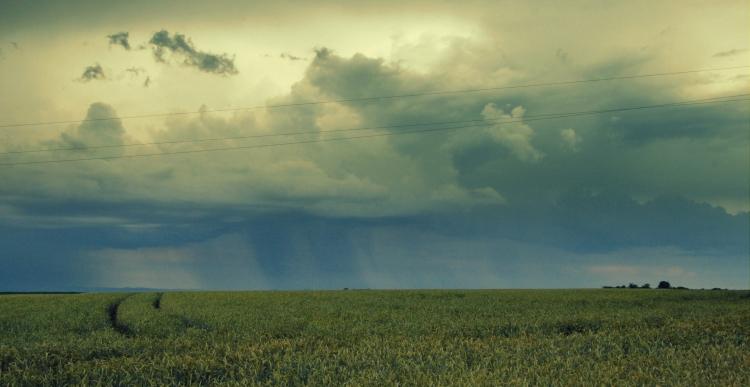 viharkár