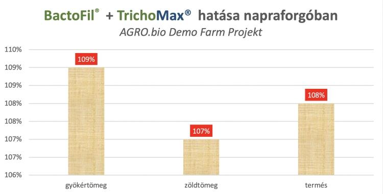A BactoFil® Napraforgó + TrichoMAX® talajoltás