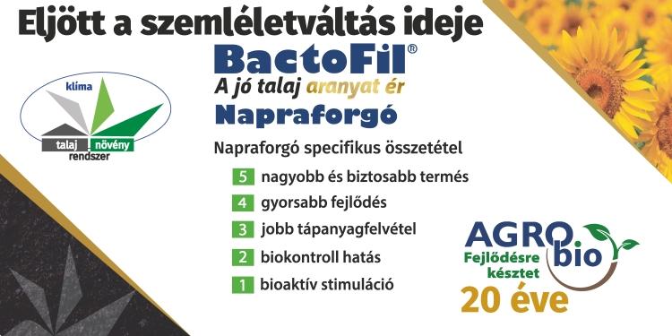 napraforgó Bactofil