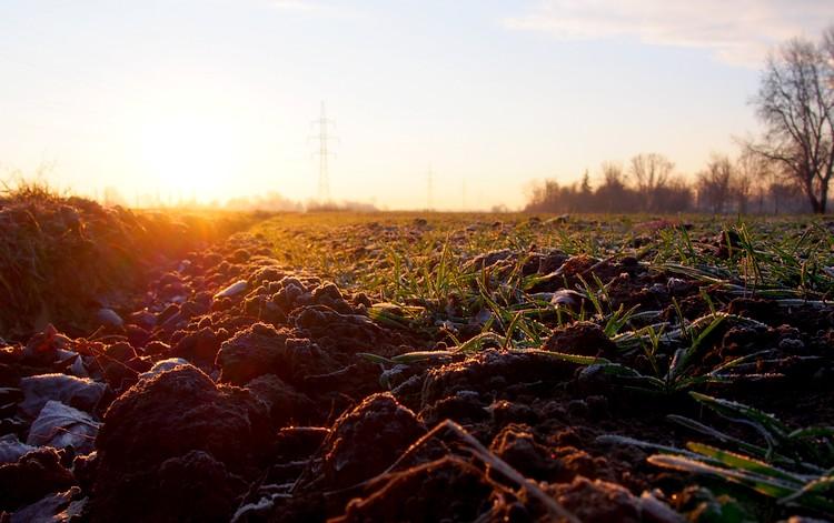 Mezőgazdaság és szántóföld