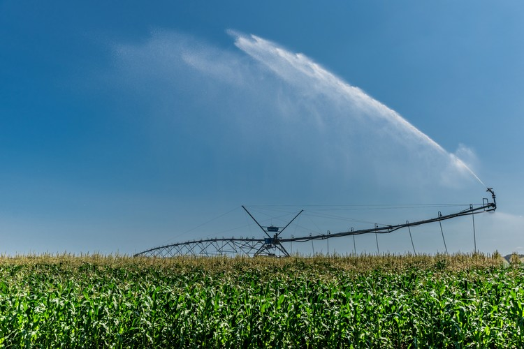 Mezőgazdaság és KITE, PGR
