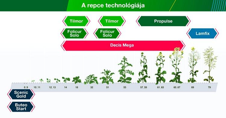 Bayer technológia a repcében, mezőgazdaság