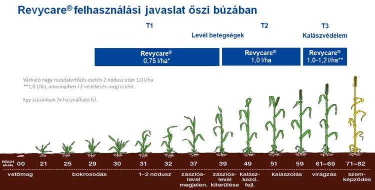 Mezőgazdaság, őszi búza betegségek, BASF megoldás