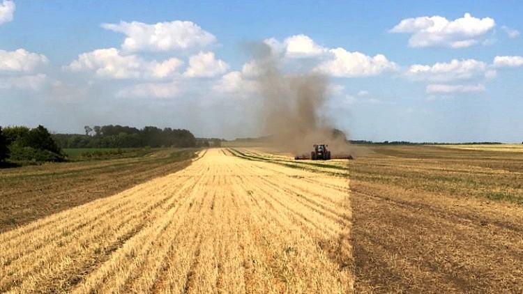Mezőgazdaság, repce termesztés Horsch technológiával