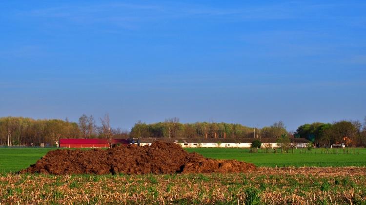 Mezőgazdaság, egységes kérelem