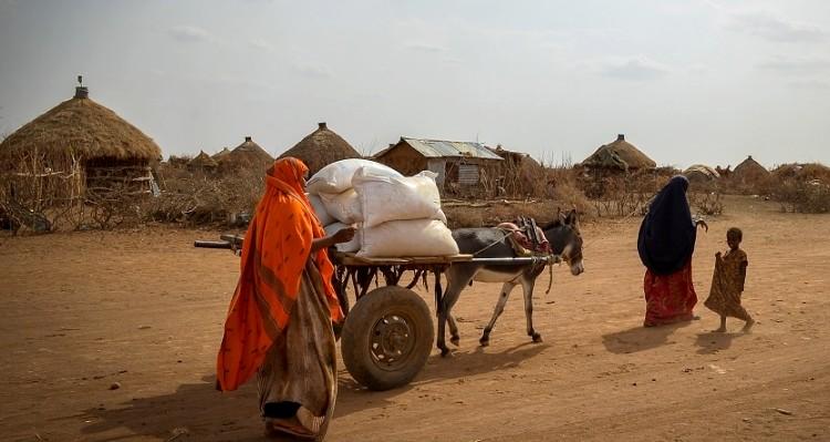 Mezőgazdaság, FAO élelmiszerárak