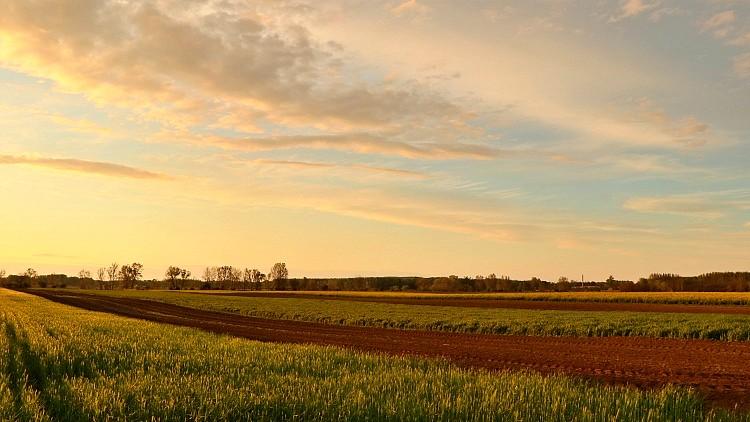 Agrártámogatásokhoz kapcsolódó zöld intézkedések