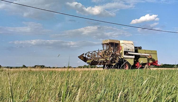 Mezőgazdaság, okmányok