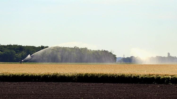 Mezőgazdaság, belvíz