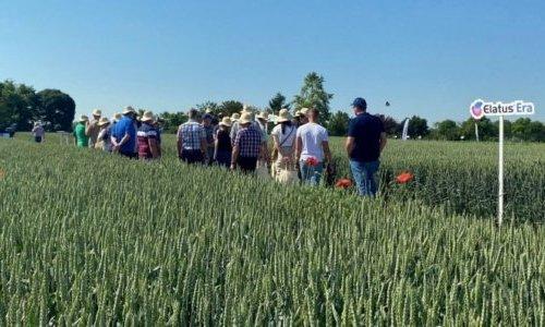 Syngenta technológia, mezőgazdaság