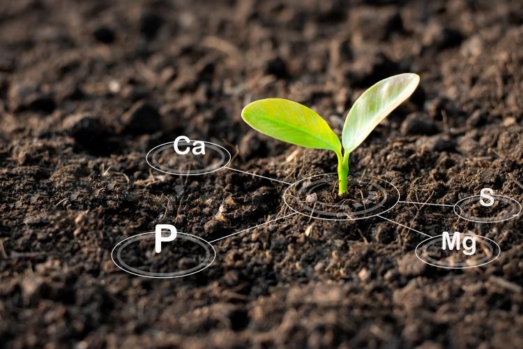 KITE talajkondiciónálás