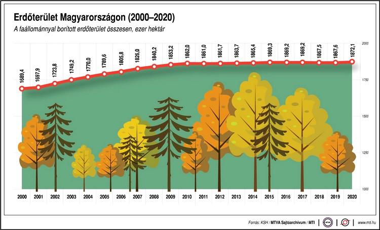 Faállománnyal borított erdőterület
