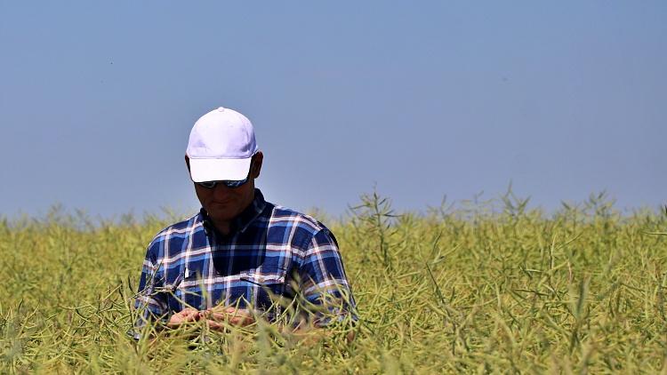 Mezőgazdaság, magyar gazdák